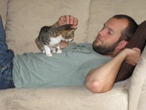 Mocha - kitten