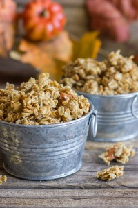 Pumpkin-Pie-Spice-Coconut-Oil-Granola-4